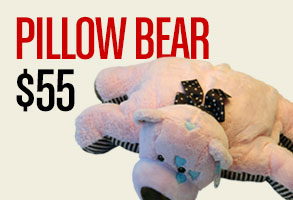 Click here to order Pillow Bear